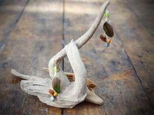 Boucles d'Oreilles, Plumes vertes et Graines 2