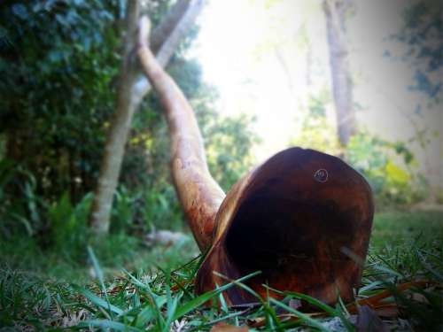 Didgeridoo Nendj